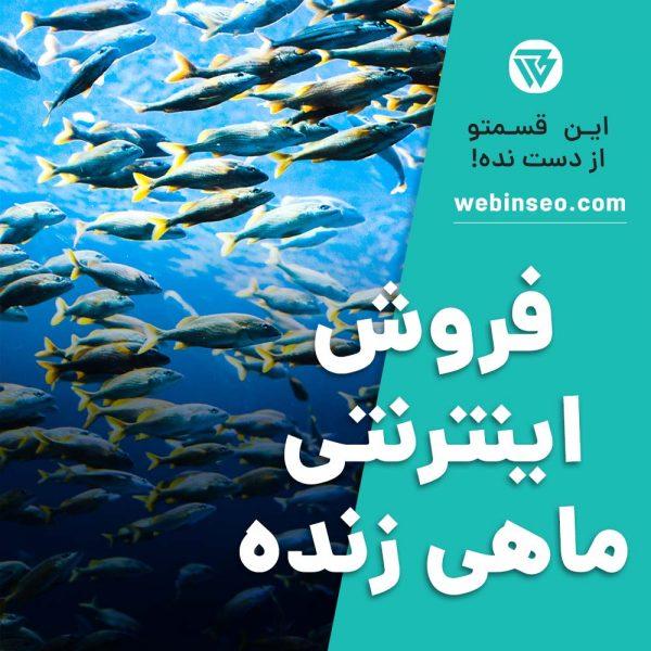 فروش اینترنتی ماهی زنده